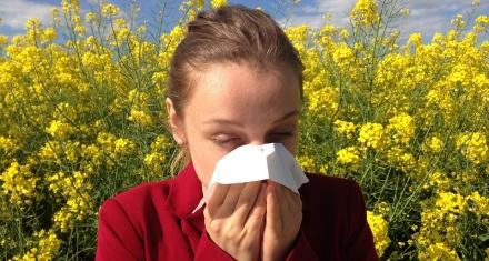 OMS: Para el 2050 la mitad de la población mundial padecerá algún tipo de alergia
