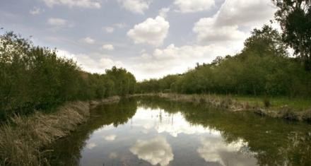 En la Unión Europea la mayoría de las aguas no alcanzan el objetivo mínimo de calidad