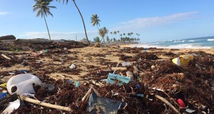 Urge impulsar políticas específicas para minimizar la basura de los océanos