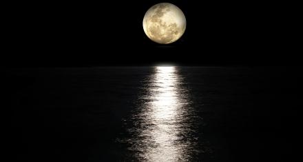 ¿Cómo sería la vida en la Tierra si no existiera existido la Luna?