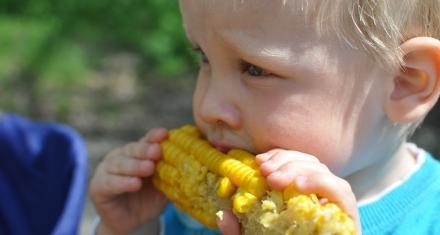 Obesidad infantil: Un nuevo estudio muestra las implicancias en el desarrollo de la masa grasa en los primeros meses de vida con el sobrepeso infantil en los años siguientes