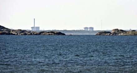 Europa: La ONU detecta niveles elevados de radiación en el norte de la región
