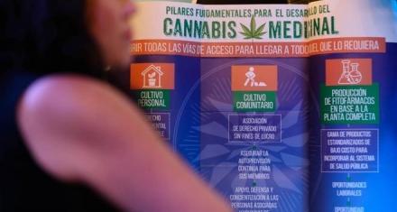 Portugal: Rechaza al cannabis recreativo pero deja abierta su posible legalización