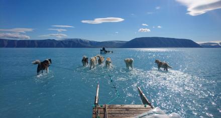 Groenlandia: La imagen que demuestra la rapidez con la que se están derritiendo los polos
