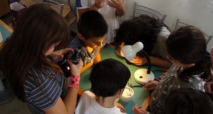 Educación en Argentina: Los resultados de la prueba Aprender arroja las desigualdades del país
