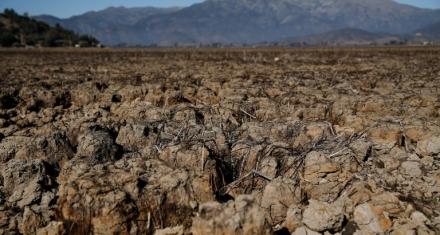 Chile: La crisis climática deja huella en la laguna seca de Aculeo