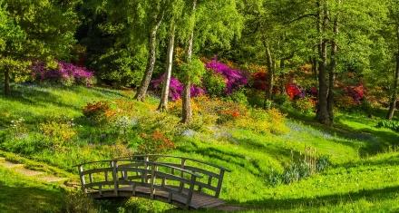 Áreas verdes en ciudades para reducir las muertes prematuras
