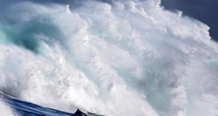 Océanos en riesgo por choque de intereses en el mar