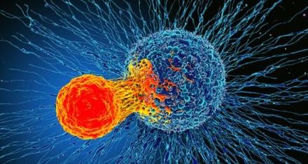 Tratamiento de inmunoterapia contra el cáncer