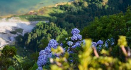 Cuidar la biodiversidad para conseguir un planeta sin pandemias