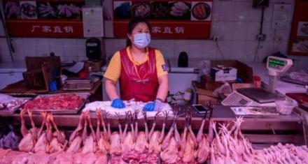 Restringen el comercio y sacrificio de aves vivas en los mercados de China