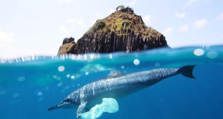 Estados Unidos y Japón se negaron a firmar contra la contaminación plástica en los océanos