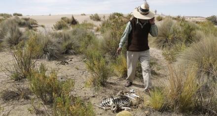 Debido al cambio climático América Latina pierde al menos 17 mil millones de dólares anuales