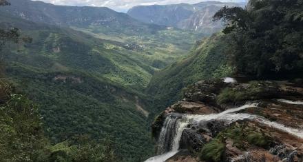 Las presiones detrás del desastre ambiental que vive la Amazonia
