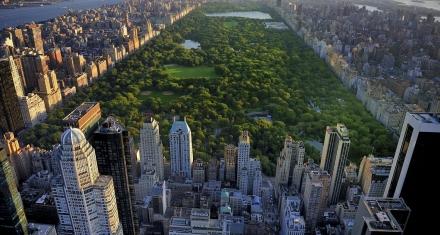 No más autos en el Central Park