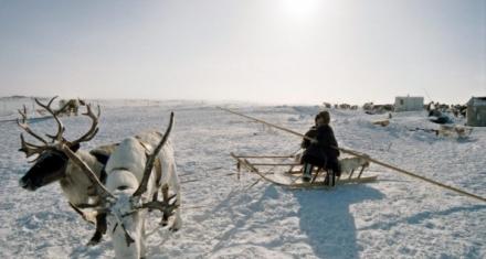 Emergencia por nuevo derrame de combustible en el Círculo Polar Ártico