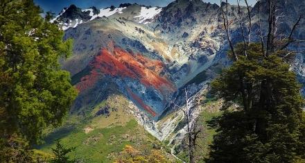 Elecciones en Argentina: Interes de los ciudadanos por políticas medioambientales