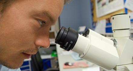 La OMS necesita $31 millones para pruebas y vacunas contra el covid-19