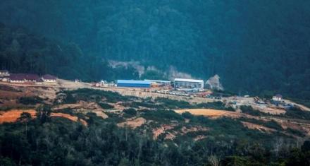 Indonesia: Una hidroeléctrica amenaza el hábitat del orangután más vulnerable