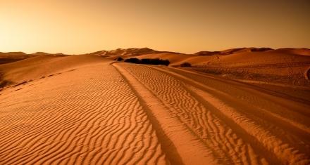 Estudio revela que la inhalación del polvo del Sáhara inflama las vías respiratorias
