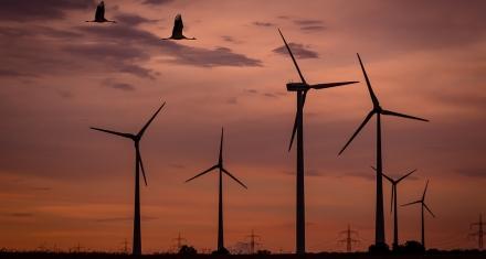 Industria prepara una nueva subasta de energía renovable para final de año