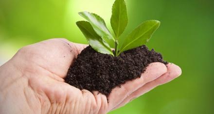 ¿Qué es ser sustentable?