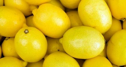 Limones sustentables en Salta