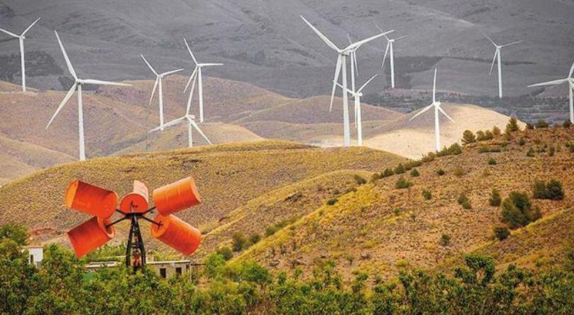 Foto: noticias ambientales
