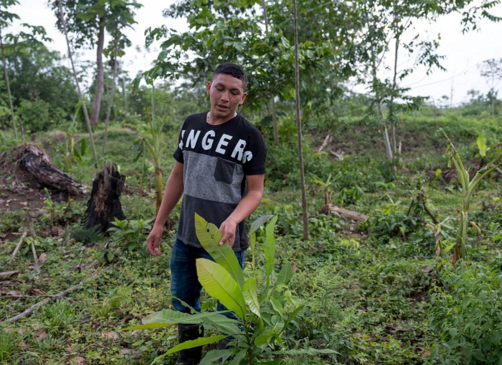 Foto: Ramón Bedoya, en la tierra de su familia (Colombia). THOM PIERCE / GLOBAL WITNESS