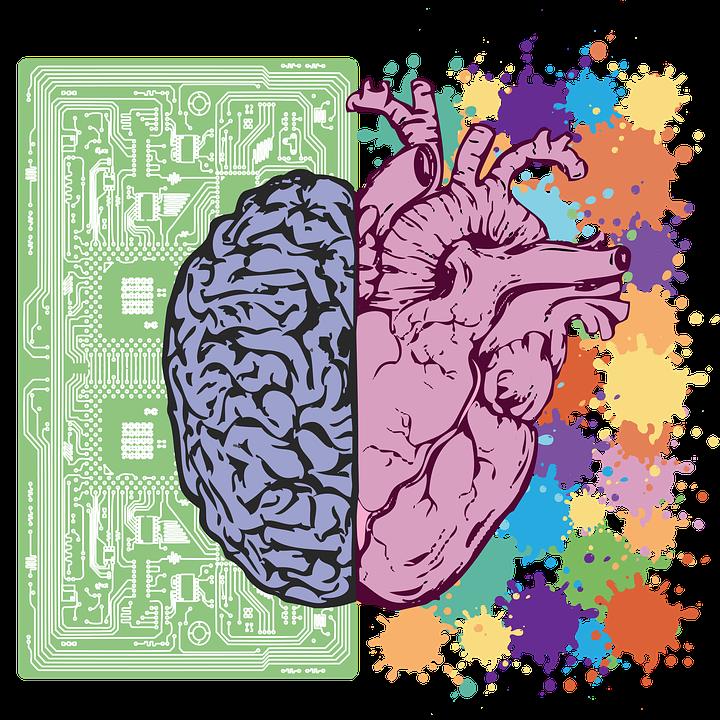 cerebrocorazon