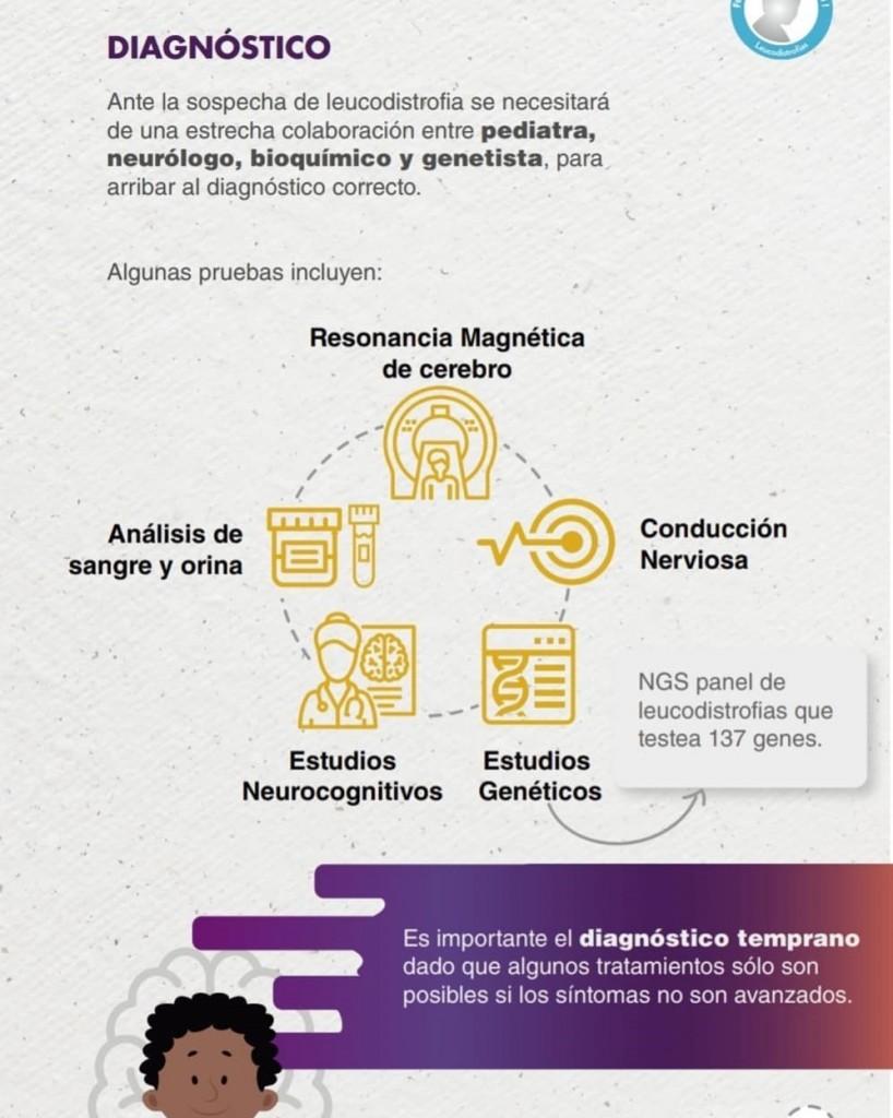 leucodistrofia2