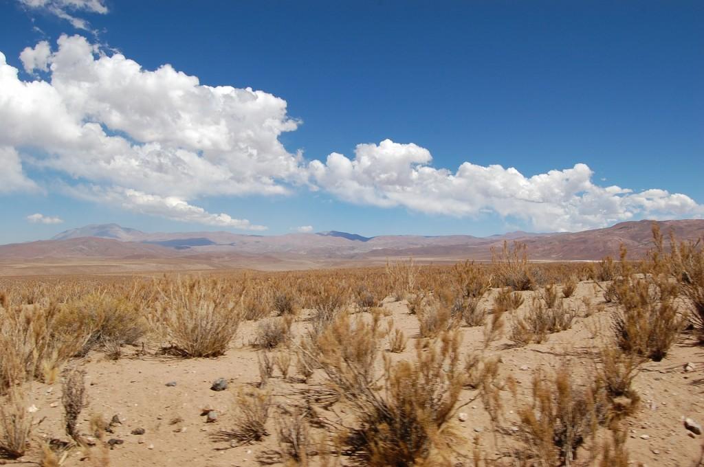 Desierto de Atacama / Chile