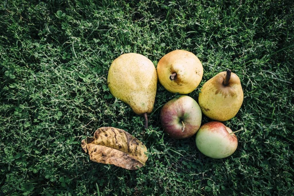 manzanapera
