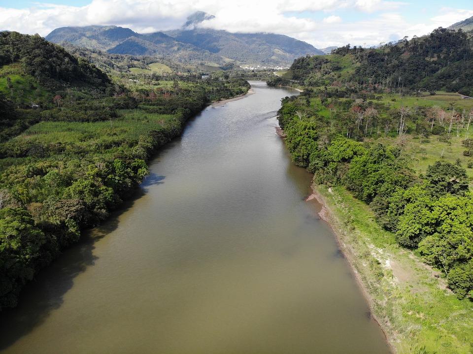 amazoniario
