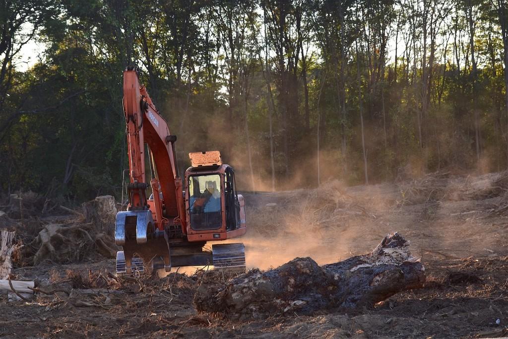 deforestaciongrua