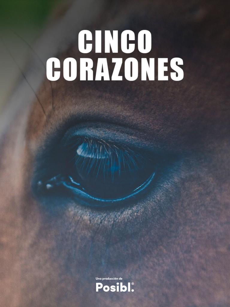 5 Corazones Movie Poster