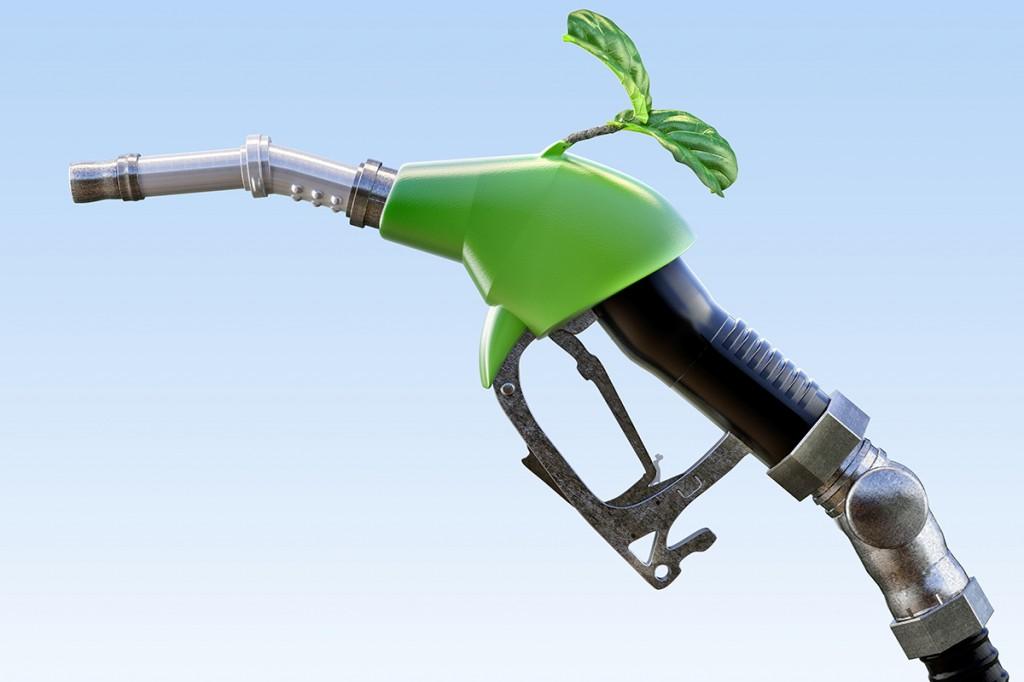 biofuel_for_web